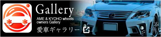 愛車ギャラリーコーナー「CX3_168N」様のご紹介 -