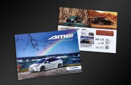 AME BRAND BOOK 2021 -
